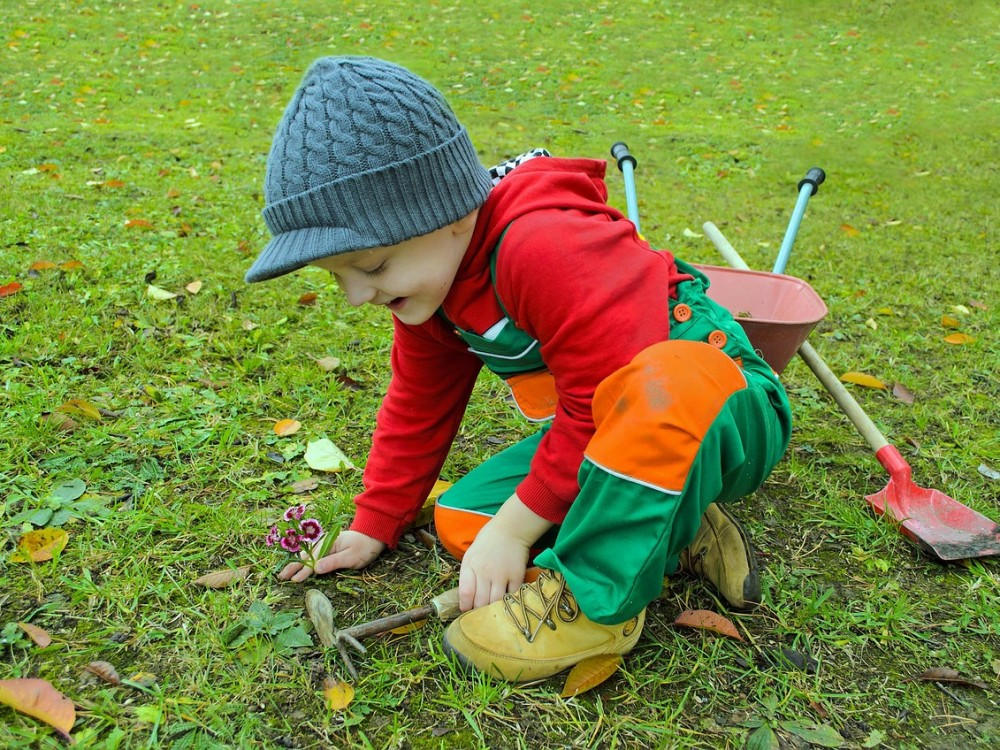 boy garden planting